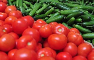 Tarladan seraya geçen domates fiyatı en çok artan...