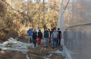 TARSİM'den Mersin, Antalya ve Muğla'ya ziyaret