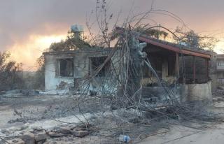 TARSİM'den yangın ve sel hasarları hakkında...