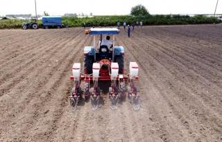 Tarsus Belediyesi, bu kez de yerli tohumla soya fasulyesi...