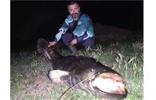 Tekirdağ'da dev yayın balığı yakalandı
