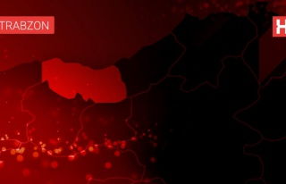 Trabzon'da dereye düşen araçtaki 2 kişi hayatını...