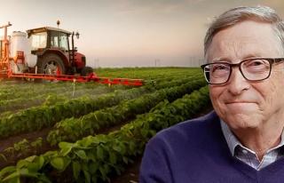 Trakya'da 'Bill Gates Arazi Aldı' Fırsatçılığı:...