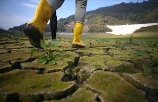 TÜSİAD'dan 'İklim Anlaşmasını Onaylayın' Çağrısı:...