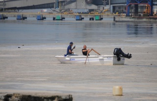 Uzmanlar Yanıtladı: Müsilaj Balıklarda Zehir Etkisi...