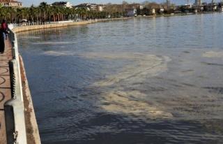 Vatandaşların kirlilik sandığı İzmit Körfezi'ndeki...