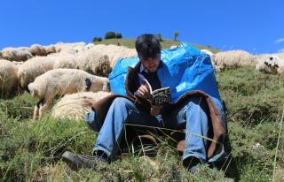 Yaylalarda Çobanlık Yaparken Robert Lisesi'ni Kazandı,...