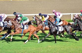 At Yarışları 10 Haziran'da her tarafta başlıyor