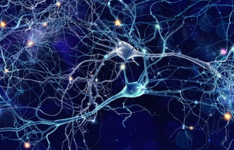 Beynimizde neler olduğu kaydedildi