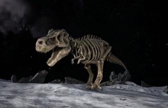 Bilim Muhabirinden İlginç İddia! Dinozorlar Ay'a Nasa'dan Önce Ulaşmış Olabilir