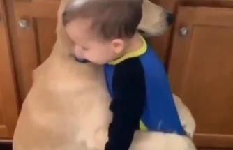 Birbirlerine Sarılan Ufaklık ile Köpeğin Kalpleri Eriten Görüntüleri
