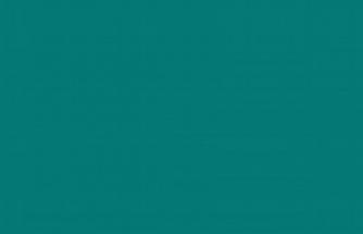 Bu renk mavi mi, yeşil mi?