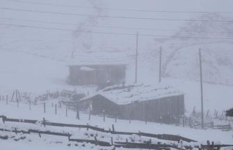 Doğu Karadeniz'in yüksek kesimlerinde kar kalınlığı 30 santimetreyi buldu