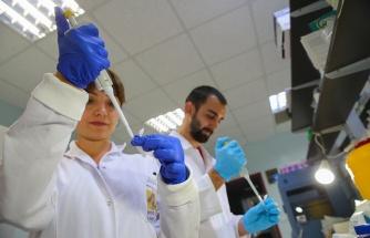 En Çok Orman İşçileri ve Avcıları Etkiliyor: Türk Bilim İnsanlarının 19 Yıllık Araştırmasından 4 Ölümcül Virüs Çıktı