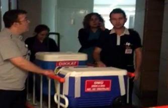 Ev hanımının organları 3 hastaya umut oldu