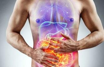 Geçirgen bağırsak sendromu nedenleri nedir, iyi gelen gıdalar neler?