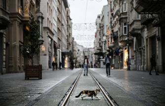 Google Analizi: Kısıtlama ve Yasaklar Şehirlerdeki Hayatı Nasıl Etkiledi?
