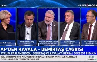 İYİ Partili Bahadır Erdem'den Demirtaş Yorumu: 'AİHM Kararını Uygulamak Zorundasınız'