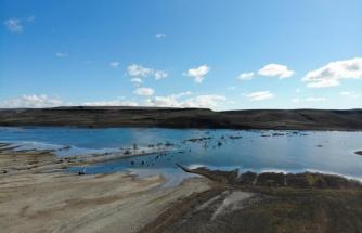 Kars Barajı'nı kuraklık vurdu