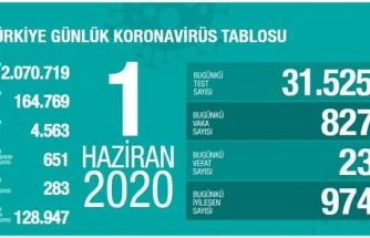 Koronavirüs Türkiye: 24 Saatte 827 Yeni Vak'a, 23 Vefat