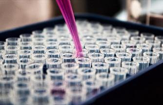 Koronavirüste Bugün: Çin, Kovid-19 Aşısının Yıl Sonuna Kadar Hazırlanmış Olacağını Açıkladı