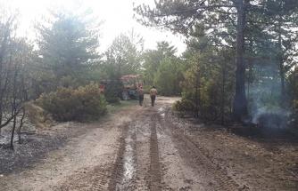 Kütahya'daki orman yangınında 50 hektarlık bölge hasar gördü
