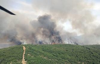 Muğla'daki orman yangını havadan ve karadan müdahaleye karşın büyüyor