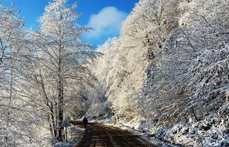 Ordu'da kar güzelliği