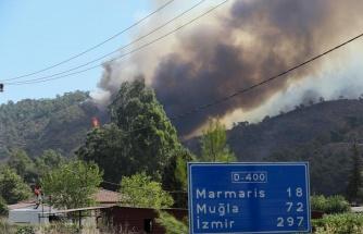 Orman Yangınları 3 İlde Sürüyor: 'Gündoğmuş Yanarsa Batı Toroslar Yanar'