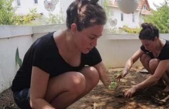 Özge Borak organik tarıma başladı