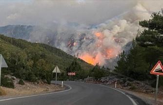 Pakdemirli: 'Yangınların 88'i Kontrol Altında, 10'u Sürüyor'
