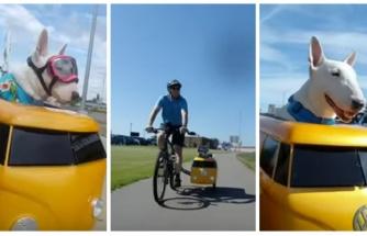 Sahibinin Bisikletine Ek Olarak Yaptığı Özel Aracın İçinde Gezintiye Çıkan Köpeğin Keyif Dolu Anları