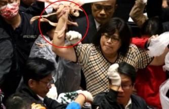 Tayvan parlamentosunda milletvekilleri birbirlerine bağırsak attı