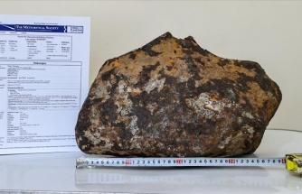 Van'da Bulunan Gök Taşı 'Doğuzağaç' Adıyla Uluslararası Meteorit Veri Bülteni'ne İşlendi