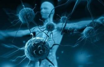 Virüs hakkında 4 bağışıklık senaryosu
