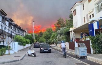 Yerleşim Yerlerini Tehdit Ediyor: Marmaris'te Orman Yangını
